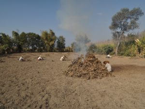 The slash and burn technique applied near the water line and in the hillsides around the lake also contributed to an extraordinary flow of surplus mineralized nutrients leaching to the lake.