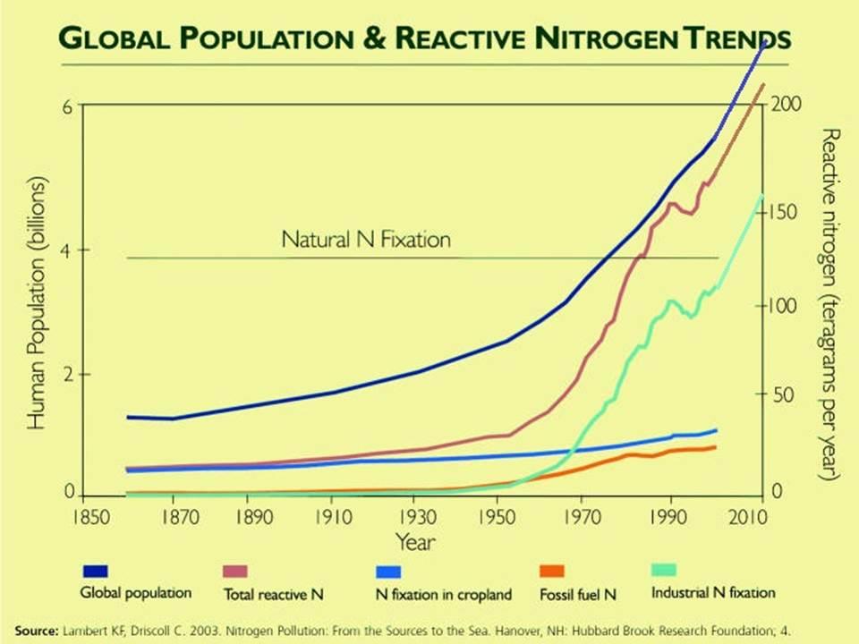 NH3 consumption 1850-2012